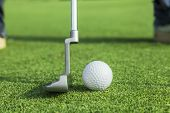 Taco coloca uma bola de golfe com buraco no Green do campo de golfe