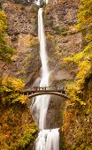 Multnomah Falls Waterfall Columbia River Gorge, Oregon Pacific Northwest