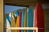 Surfboards Rent And Store On The Beach