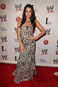 LOS ANGELES - AUG 15:  Brie Bella at the Superstars for Hope honoring Make-A-Wish at the Beverly Hil