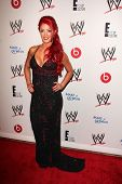 LOS ANGELES - AUG 15:  Eva Marie at the Superstars for Hope honoring Make-A-Wish at the Beverly Hills Hotel on August 15, 2013 in Beverly Hills, CA