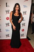 LOS ANGELES - AUG 15:  Nikki Bella at the Superstars for Hope honoring Make-A-Wish at the Beverly Hi