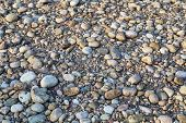 a field of pebbles and rocks - a dry bed of mountain river