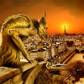 sundown on Paris - view from old Notre dame -artistic toned picture