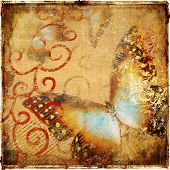 vintage abstraction with butterfly