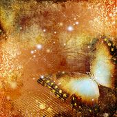 abstract grunge background with butterfly
