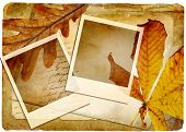 autumn retro background with frames and leaves