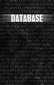 Database in Business as Motivation in Stone Wall