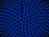 dark spheres background