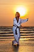 stock photo of taekwondo  - Martial arts man training taekwondo at sunset