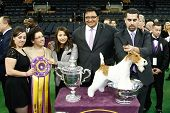 NEW YORK-FEB 11: Sky, a wire fox terrier and handler Gabriel Rangel (2nd R) wins Best in Show at 138