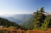 Mt. Baker Viewed From Hidden Lake Trail
