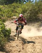 Mountainbike DH Racer