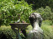 birds_land_in_bath