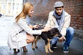 Portrait of happy young couple in stylish clothes feeding dog outside