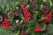 Winter and christmas background with red holly berry clusters, mistletoe, spruce fir leaf sprigs and pine cones.