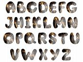 Beautiful Alphabet