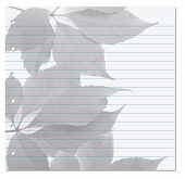Notebook Paper With Virginia Creeper Leaf On Background