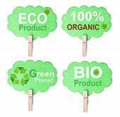 Eco Friendly Label, Isolated On White Background