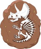 Cartoon triceratops fossil
