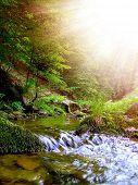 Romanian summer mountain scenery