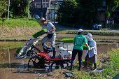 Japanese rice farmer loading his planting machine