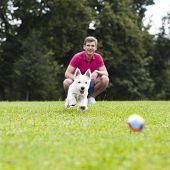 Young man playing with his dog in the summer park