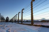 stock photo of auschwitz  - Fence around nazi concentration camp of Auschwitz Birkenau Poland