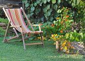 Relaxing In Garden