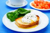 Poached Egg With Salmon And Spinach