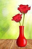 Dewy red rose in vase