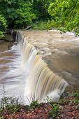 Alongside Anderson Falls