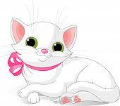 Постер, плакат: Очень милый белый Кот