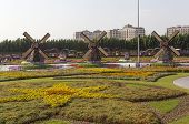 DUBAI, UAE - DECEMBER 23, 2014: Photo of Flower Park (Dubai Miracle Garden)