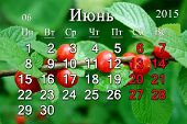 Calendar For June Of 2015 Year With Prunus Tomentosa