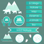 ecology signs and symbols of polar bears