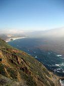 Scene From California Coast With Kelp