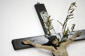 picture of inri  - Jesus Christ on cross with olive branch on white wall - JPG
