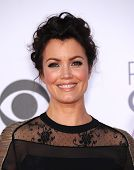 LOS ANGELES - JAN 07:  Bellamy Young arrives to the People's Choice Awards 2014  on January 7, 2015 in Los Angeles, CA