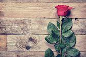 Vintage Rose On Old Wooden Background