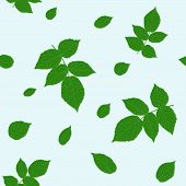 Green raspberry leaves. Traditional colors. Seamless pattern.