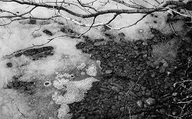 picture of rocking  - Ice thins at the edges first and is a good sign of the coming spring - JPG