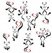 Logo :black cats