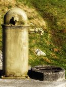 picture of dragon head  - Old water tap with a dragon head - JPG