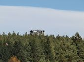 stock photo of observed  - observation tower above the tree tops - JPG