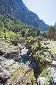 image of samaria  - At the river - JPG