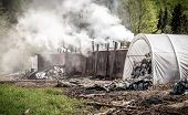 stock photo of charcoal  - Traditional way of charcoal production in the forest of Bieszczady Mountains Poland - JPG