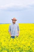 image of cultivation  - Male Farmer Standing in Oilseed Rapeseed Cultivated Agricultural Field Examining and Controlling The Growth of Plants Crop Protection Agrotech Concept - JPG
