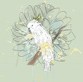 stock photo of cockatiel  - Vector sketch of a parrot with flower - JPG