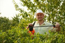 image of pest control  - working man with garden pruner against summer time in garden - JPG